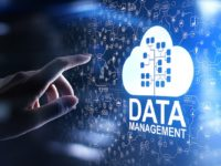 Most organizations struggle with data management
